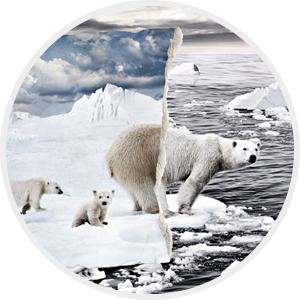 Série Réchauffement climatique
