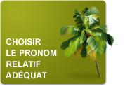 Choisir le pronom relatif adéquat (Exercices)