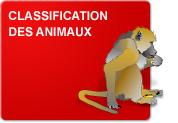 Classification des animaux (Théorie et Exercices)