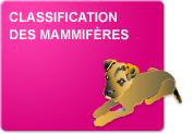 Classification des mammifères (Théorie et Exercices)