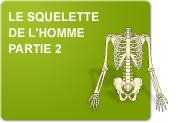 Le squelette de l'homme: Du dessin au nom (Exercices)
