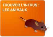 Trouver l'intrus : Les animaux (Exercices)