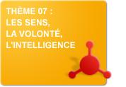 Thème 07 : Les sens - La volonté - L'intelligence (Exercices)