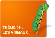 Thème 19 : Les animaux (Exercices)