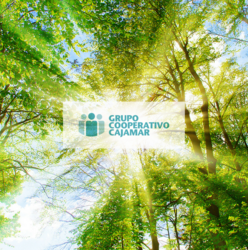 The Grupo Cooperativo Cajamar gets a magnificent qualification in the management of its carbon footprint
