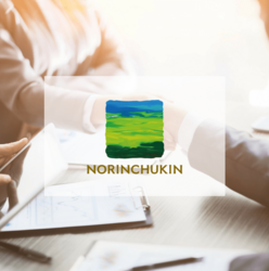 The Norinchukin Bank: Annual report 2017