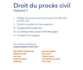 Droit du procès civil - Volume 1