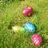 Largage d'œufs de Pâques au club Exocet de Rognée