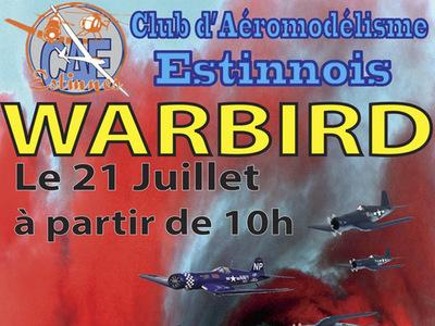 WarBirds au Club d'Aéromodélisme Estinnois