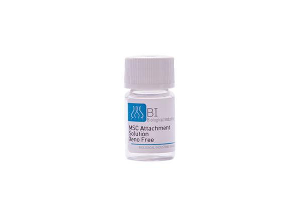 MSC Attachment Solution