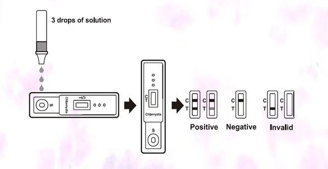 Chlamydia Rapid Test Device